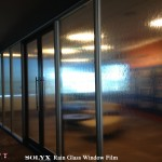 Denver Decorative Window Film