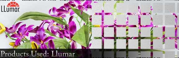 product_main_Llumar